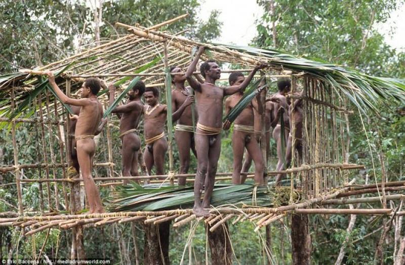 Tribul care traieste in case construite in copaci
