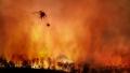 Stiinta trebuie sa-si imbunatatească predictiile climatice. Incendiile din America si inundatiile din Europa nu au putut fi anticipate