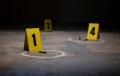 Doi frati și-au masacrat intreaga familie de 6 persoane, dupa care s-au sinucis