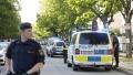 Rafuieli in stil mafiot in Suedia