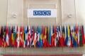 PESTE 200 DE OBSERVATORI AI OSCE VOR MONITORIZA ALEGERILE PARLAMENTARE DIN 30 NOIEMBRIE