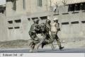 MOSCOVA ANUNTA CONTRAMASURI, DENUNTIND O CRESTERE A PREZENTEI NATO IN APROPIEREA FRONTIERELOR RUSE