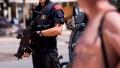 Un membru al bandei Panterele Roz a fost arestat in Spania