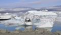 Descoperire neasteptata in Siberia! A hibernat timp de peste 40.000 de ani in permafrost, iar acum a revenit la viata