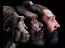 Oamenii nu sunt originari de pe Terra. Ei au fost adusi pe Pamint de extraterestrii datorita comportamentului lor agresiv