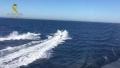 Traficanti de droguri, arestati dupa ce i-au salvat de la inec pe politistii care ii urmareau pe mare