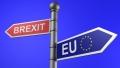 UE ISI DEZVALUIE PRIMUL PLAN DE NEGOCIERI CU PRIVIRE LA BREXIT