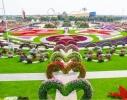 Cea mai mare grădină de flori din lume se află la Dubai