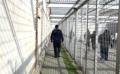 Cincisprezece angajaţi ai DIP sînt acuzaţi de favorizarea activităţii unei organizaţiei criminale
