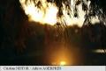 DOCUMENTAR: Echinoctiul de Toamna
