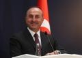 Despre cele două conferinte separate privind medierea, conduse de catre ministrul Afacerilor Externe al Republicii Turcia, Mevlüt Çavuşoğlu, la Istanbul, pe 29 si 30 noiembrie 2018