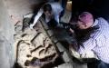 SAPTE MORMINTE DIN TIMPUL FARAONILOR, DESCOPERITE IN APROPIERE DE CAIRO