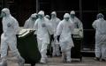 Rusia a raportat la OMS primele cazuri de infectare umana cu varianta AH5N8 a gripei aviare