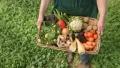 AGRICULTURA DIN TARILE LUMII (4)