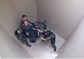 Momentul in care un detinut e batut crunt si electrocutat de 8 gardieni, in SUA