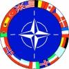SPANIA ŞI PORTUGALIA VOR GĂZDUI UN MARE EXERCIŢIU MILITAR AL NATO