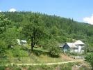 Intr-un sat polonez, de 9 ani se nasc numai fete