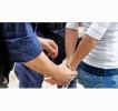 A FOST CONTRACARATĂ ACTIVITATEA UNEI GRUPĂRI CRIMINALE, SPECIALIZATE ÎN ORGANIZAREA MIGRAŢIEI ILEGALE