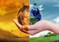Manifestatii la nivel mondial pentru constientizarea schimbarilor climatice, inainte de summitul COP 24