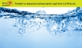 De ce este apa udă?