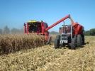 SITUATIA DIN AGRICULTURA, DIN NOU IN ATENTIA CONSILIULUI COALITIEI DE GUVERNARE
