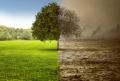 50 de ani de predictii ECO-apocaliptice esuate