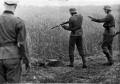 """Cum isi povesteau soldatii germani faptele din timpul razboiului, la un """"pahar de vorba"""": """"Era grozav si foarte distractiv"""""""