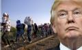 Majoritatea americanilor nu sunt de acord cu Trump in problema solicitantilor de azil