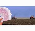 MOLDOVA VA ÎMPRUMUTA 10 MILIOANE DE DOLARI PENTRU ASISTENŢĂ DE URGENŢĂ ÎN AGRICULTURĂ