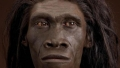 """Cauza care a dus la disparitia speciei primitive Homo erectus a fost """"lenea""""!"""