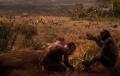 Fosile vechi de 7,2 milioane de ani, descoperite in Grecia, indica faptul ca omul a aparut în Europa, si nu in Africa