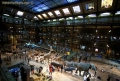 Muzeul National de Istorie Naturala din Paris readuce la viata specii disparute prin realitatea augmentata