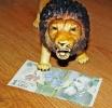 Şapte lucruri inedite despre banii româneşti