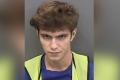 Un tinar de 17 ani a fost inculpat in SUA pentru piratare pe Twitter