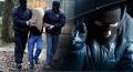 Din patriotism, moldovenii din diaspora fura doar de la ai lor