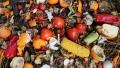 Anual, oamenii arunca aproape un miliard de tone de alimente