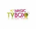 O ALTERNATIVĂ PENTRU DIGITALIZAREA TELEVIZIUNII ÎN MOLDOVA