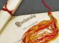 320 DE LOCURI LA BUGET PENTRU CICLUL III – STUDII SUPERIOARE DE DOCTORAT