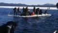 Cum au ajuns 500 de rusi sa pluteasca pe o bucata de gheata care s-a desprins de insula Sahalin