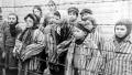 Un veteran SS, de 94 de ani, pus sub acuzare in Germania pentru crimele de la Auschwitz