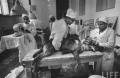 Experimentul sovietic din 1959 care a pus bazele transplantului de organe la om