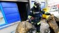 Jocul criminal cu petardele: Un francez de 25 de ani a fost decapitat de focurile de artificii