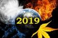 ZODII COMPATIBILE IN 2019. CU CE ZODII TE VEI INTELEGE BINE IN 2019, ANUL SCHIMBARILOR