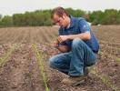 Statul va acorda prioritate în subvenţionarea tinerilor fermieri