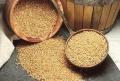 R. Moldova s-a situat pe locul şase printre ţările în care grîul s-a scumpit