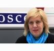 OSCE A AVERTIZAT ASUPRA ÎNCERCĂRII RUSIEI DE A PEDEPSI PRIN LEGE CRITICILE ADUSE ARMATEI ROŞII