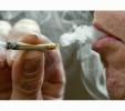 7% DIN POPULAŢIA MONDIALĂ A CONSUMAT DROGURI