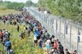 Frontiera Ungariei va fi suplimentata cu al doilea gard de protectie